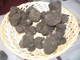 La truffe est un champignon incontournable de la gastronomie périgourdine. © OT Périgueux